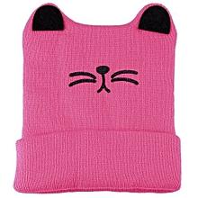 Unisex Cat Shape Autumn Winter Hat - Gray