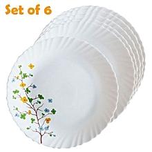 6Pcs Diva Classique Dinner Plates - Floral Magic Print