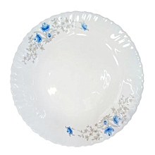 "Microwave Safe Dinner Plates 10""- Set of 6."