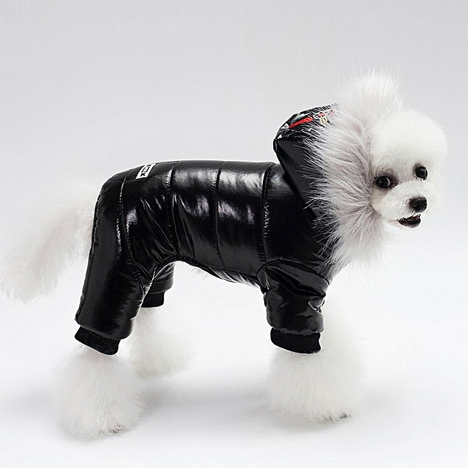 Buy Generic Home Dog Clothes Cotton Padded Hooded Leather Jacket