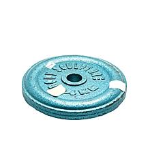 BW-4-B - Weight Cast Iron Plate - 4KG - Blue