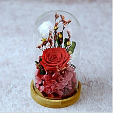 Glass Covered Small Red Rose Preserved