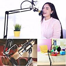 Microphone & Phone Stand Holder Kit For Internet Karaoke / Phone Karaoke / MV Recording