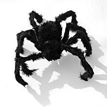 Tricky Toy Imitated Stuffed Toys Black Spider Plush Toy Haunted House Props