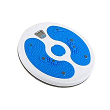 28480  - Electronic Twist Board - Blue & White