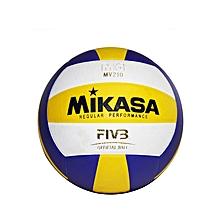 Mv 210 - Volleyball - Coloured