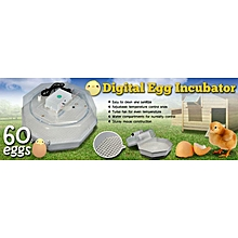 60 Eggs Incubator digital Chicken Bird Equipment solar Hatching Egg Incubator Poultry Hatcher