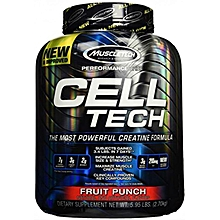 Celtech - 6LB FRUIT PUNCH