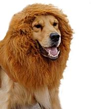Pet Wig For Dog Lion Mane