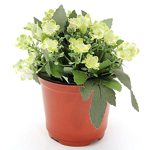 50pcs Plastic Plant Pots Home Garden Nursery Flowerpots 10 Depth Small