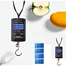 Technologg Electronic Scale  40kg X 10g Digital Scale For Fishing Luggage Steelyard Hanging Electronic Scale-Multi