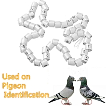 50pcs*8mm White Racing Pigeon Birds Supplies Utensils Foot Ring With Number 1-50