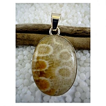 925'Sterling Silver with Turitella Agate Pendant