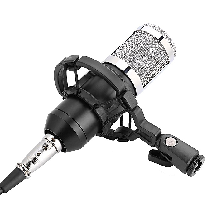 generic professional audio condenser microphone set studio sound recording mic with shock mount. Black Bedroom Furniture Sets. Home Design Ideas