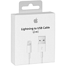 Lightning to USB Charging & Data Cable 2M (FoxConn)