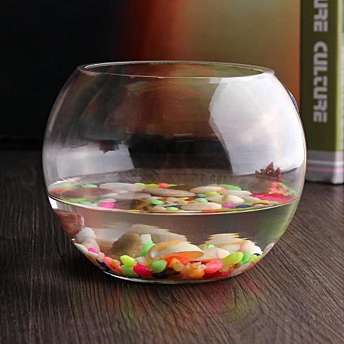 Buy Universal 15cm Round Clear Glass Vase Fish Tank Ball Bowl Flower