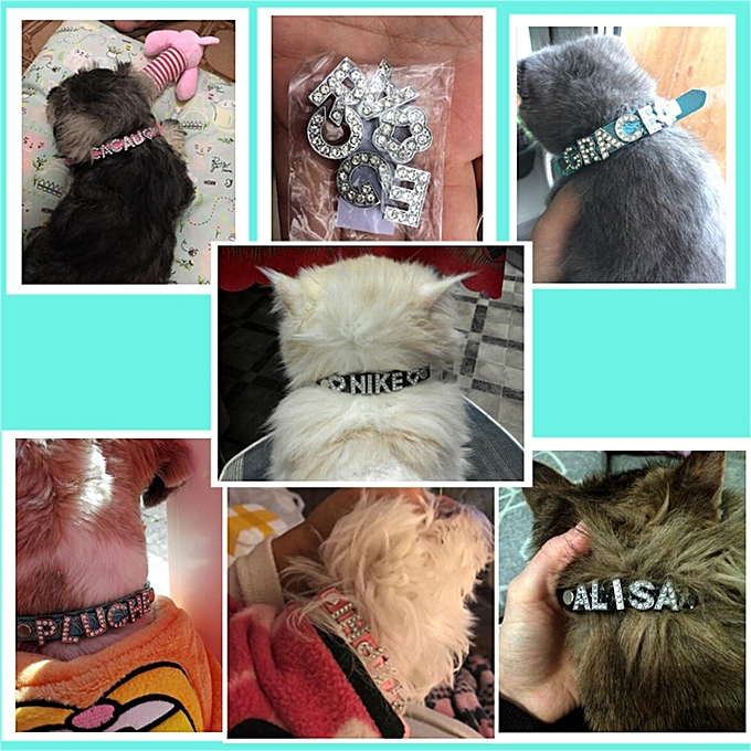 cb57b5cb0b 5 PCS 10MM Bling Personalized Dog Collar With Rhinestone Buckle DIY Name  Pet Puppy Cat Collars, Color:Blue(L)