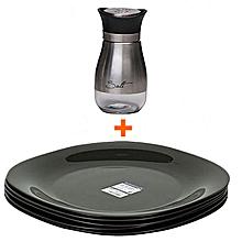 Set of 6 Dinner Full Plates + Glass Salt Shaker with stainless Steel Top.