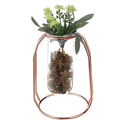 Buy Generic Hanging Glass Water Tube Vase Plant Pot Metal Stand