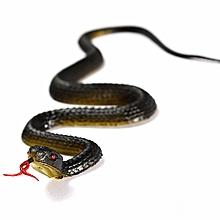 Exotic Realistic Rubber Toy Artificial Snakes  Garden Props Joke Prank Gift